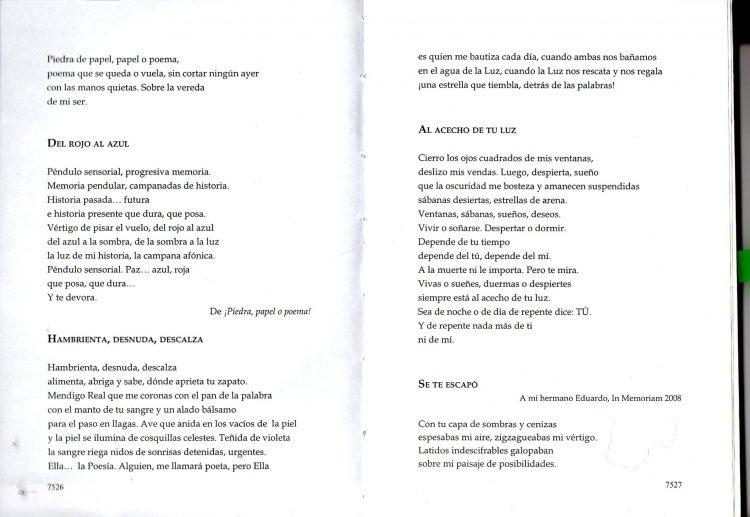 POESIA ARGENTINA CONTEMPORANEA 2