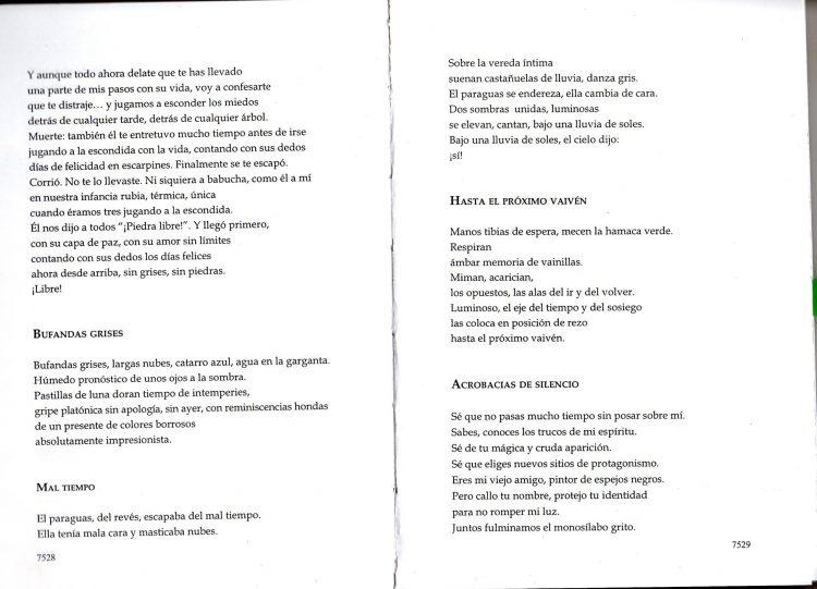 POESIA ARGENTINA CONTEMPORANEA 3