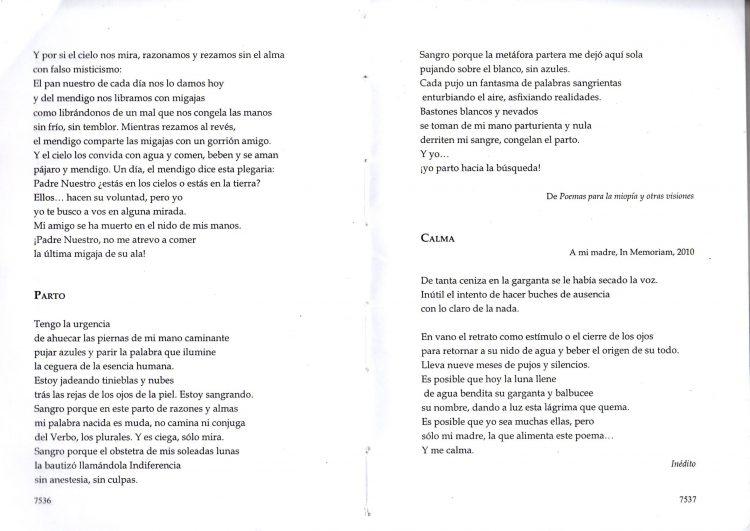 POESIA ARGENTINA CONTEMPORANEA 7